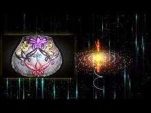 A szimbólumokat térben is megfigyelve, azok átmeneteit megismerve, egy összefüggő világkép elevenedik meg előttünk.